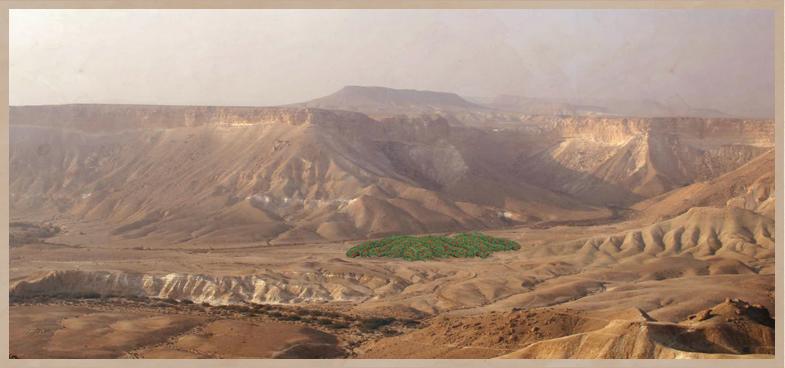 הרימון הישראלי